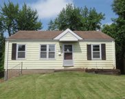 445 Jehling  Drive, St Louis image