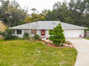 731 Galloway Drive, Winter Springs image