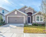 3233 HIDDEN MEADOWS CT, Green Cove Springs image
