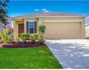 3325 99th Street E, Palmetto image