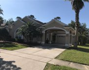 12224 Shadowbrook Lane, Orlando image