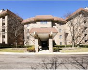 1250 Rudolph Road Unit 1B, Northbrook image