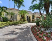 10887 Blue Palm St, Plantation image