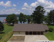2924 Willow Beach Road, Guntersville image