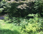 Silver Poplar Lane, Gatlinburg image