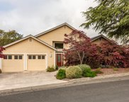 501 Hidden Acres Road, Healdsburg image