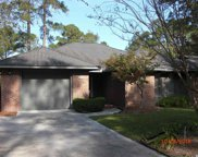 108 Myrtle Trace Dr, Conway image