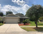 11630 Brookmore Way, Riverview image