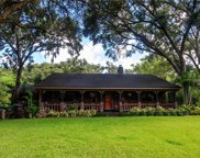 1763 Crown Point Woods Circle, Ocoee image