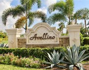 9521 Avellino Way Unit 2421, Naples image