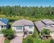 19544 Whispering Brook Drive, Tampa image