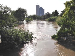Buffalo Bayou in Flood by Carol Smith