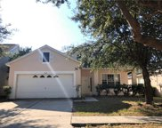11117 Newbridge Drive, Riverview image