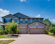 19444 Whispering Brook Drive, Tampa image