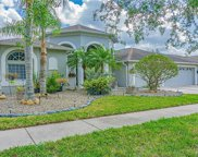 20824 Cedar Bluff Place, Land O' Lakes image