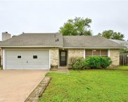 517 Blackberry Dr, Austin image