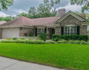 15609 Indian Queen Drive, Odessa image
