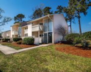1000 11th Ave. N Unit 106, North Myrtle Beach image