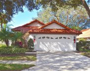 951 Harbor Town Drive, Venice image