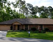12926 TALL CYPRESS CT, Jacksonville image