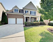 14006  Green Birch Drive, Pineville image