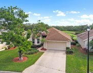 21179 Butchers Holler, Estero image