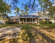 3233 Wild Horse Drive, Conway image