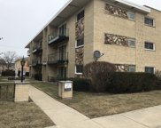 6811 North Olmsted Avenue Unit 105, Chicago image