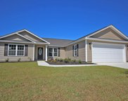 1305 Ancona Ct., Conway image