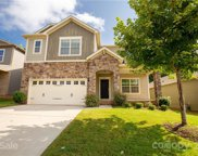 1556 Spring Blossom  Trail, Fort Mill image