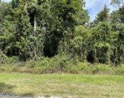 46 River Birch Road, Burgaw image