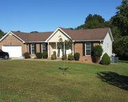 1007 Ridgeview Dr, Pleasant View image