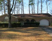 217 Hunters Rd., Myrtle Beach image
