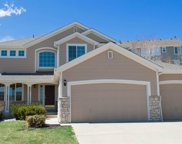 8229 Cottongrass Court, Castle Pines image