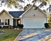 4557 Fringtree Drive, Murrells Inlet image