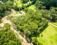 6 Solomon Unit -, Tallahassee image
