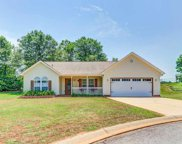 9 Red Haven Court, Greer image