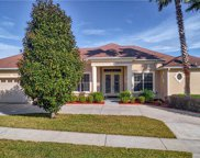 12028 Still Meadow Drive, Clermont image