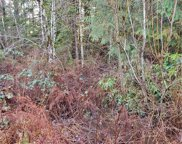 0 Lot 290 NE Tahuya Blacksmith Rd, Tahuya image