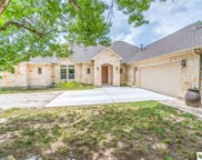 255 N Showhorse Drive, Liberty Hill image