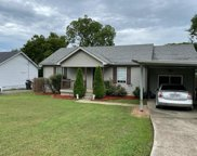 1133 Bluewillow Ct, Antioch image