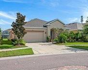 10443 Flagstaff Falls Avenue, Riverview image
