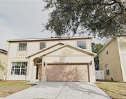 11208 Scotchwood Drive, Riverview image