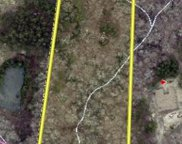 6.94 +/- Acres Griggs  Road, Clover image