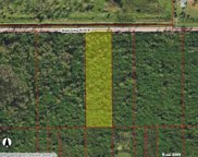780 Shady Hollow Bend, Naples image