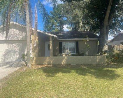 5471 Pentail Circle, Tampa