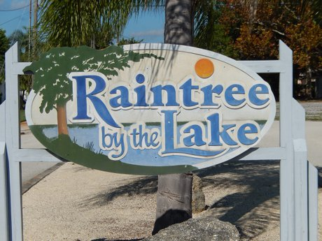 Raintree By The Lake