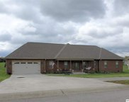 1339 Rippling Waters Cir, Sevierville image