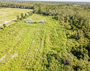 6400 Berry Groves Road, Clermont image