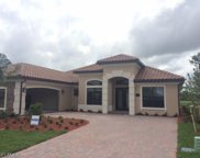 17231 Cherrywood Ct, Bonita Springs image